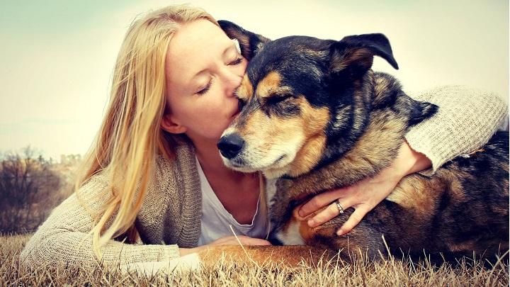 Riesgos de besar al perro