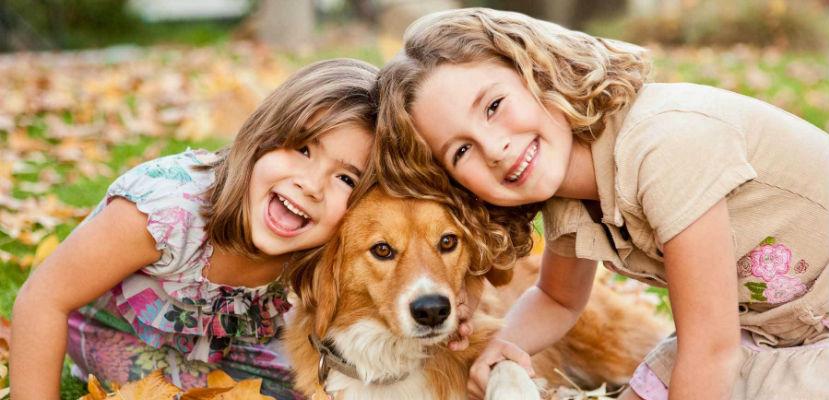 Grandes ventajas de la adopción
