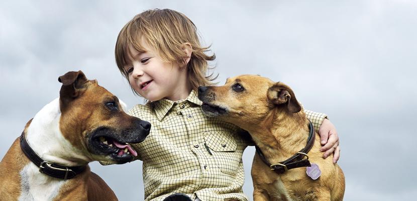 Beneficios para los niños de tener una mascota