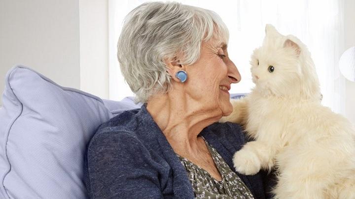 gato-anciano