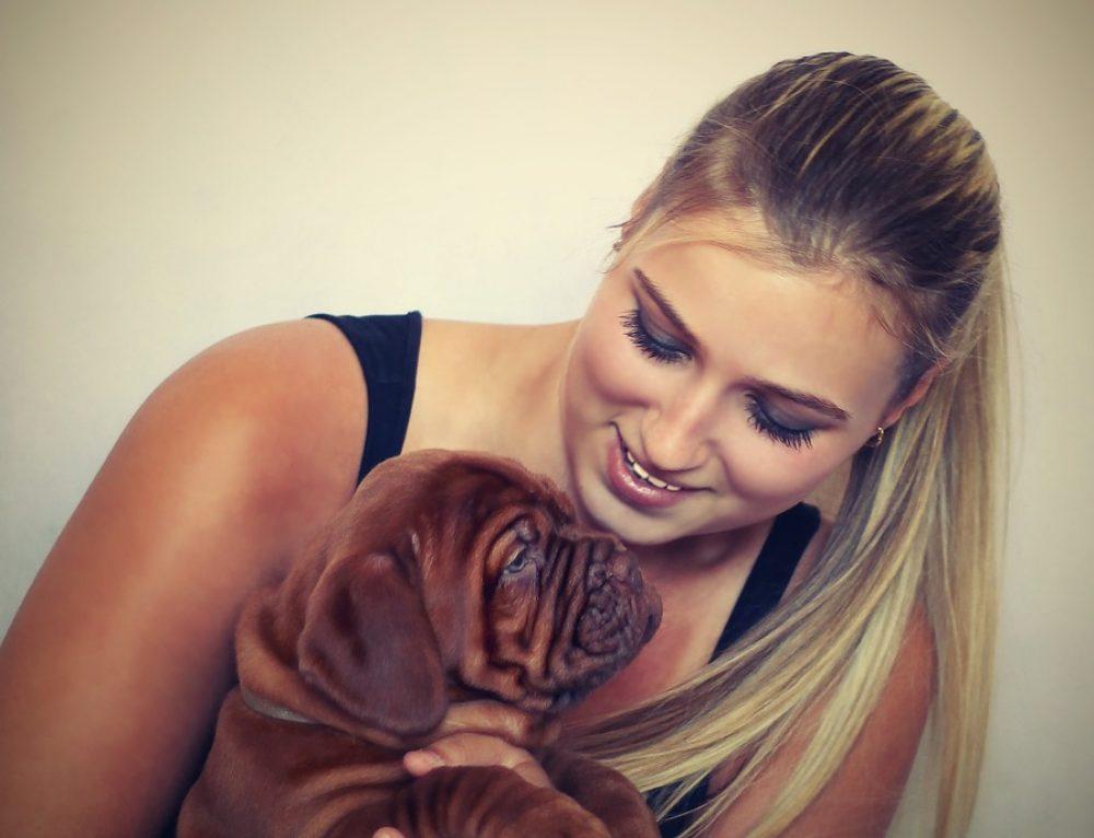 Aprende a conectar con tu perro