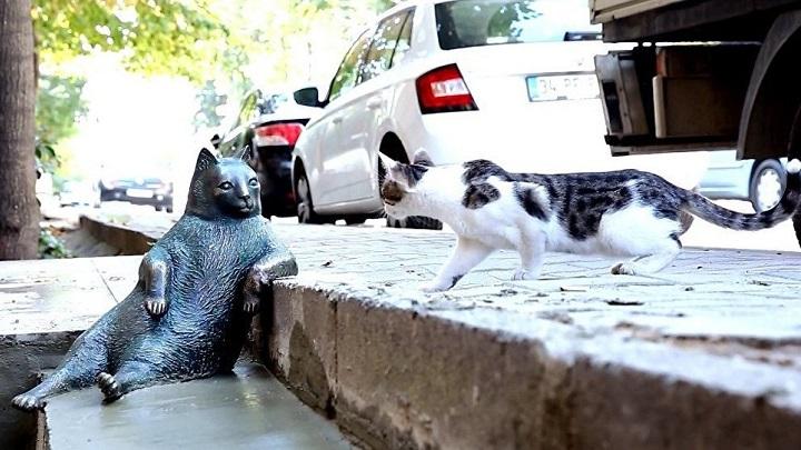 """La estatua en honor al gato más """"vago"""" de Internet"""