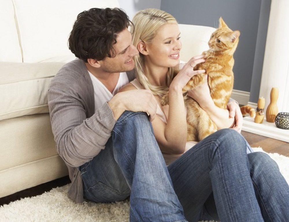 Errores que los dueños cometen con sus gatos